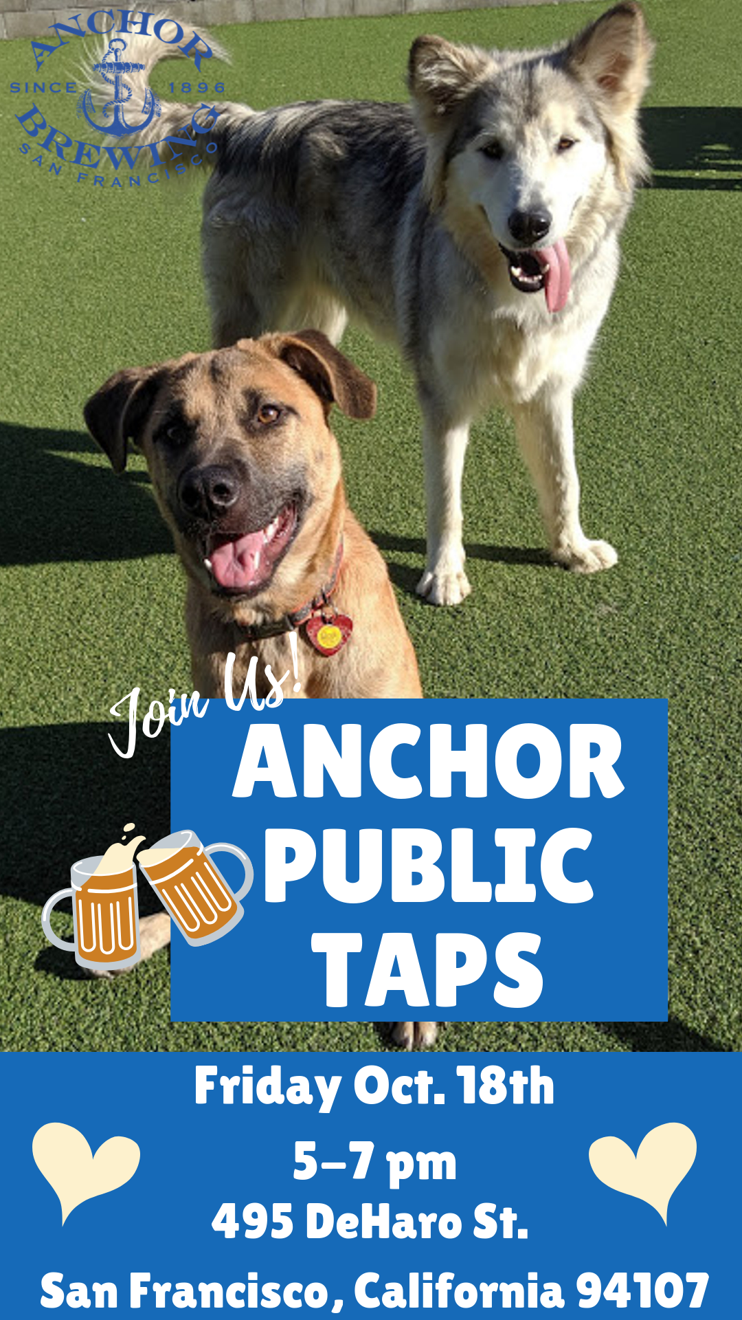 Adoption Event at Anchor Brewing! @ Anchor Public Taps