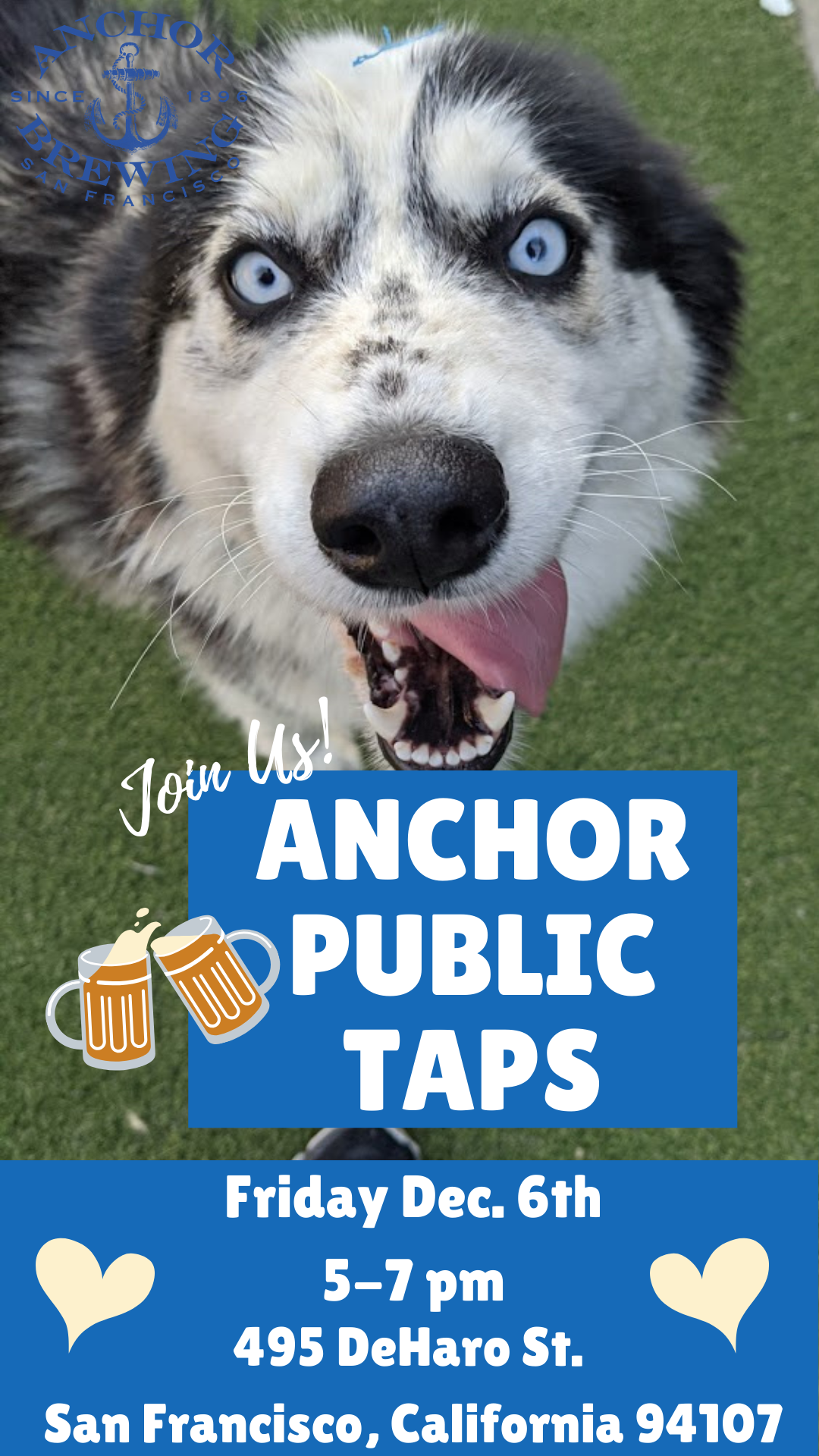Adoption Event at Anchor Public Taps! @ Anchor Public Taps
